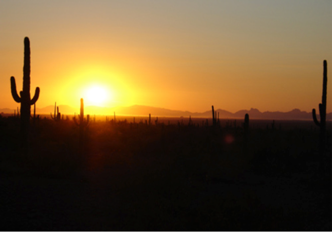 Sundown in the Arizona desert (J. Rojas)